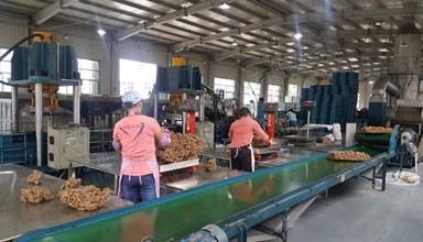 云南西双版纳勐仑宝莲华4万吨复合胶工厂