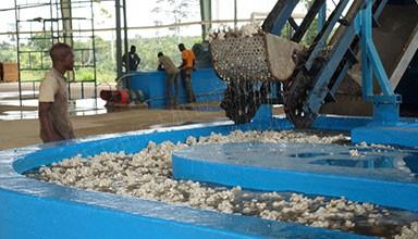 科特迪瓦1.68万吨天然橡胶TSR20生产线